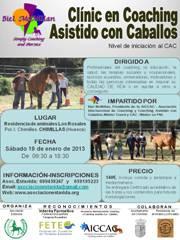 Cartel Curso CAC 19-01-2013