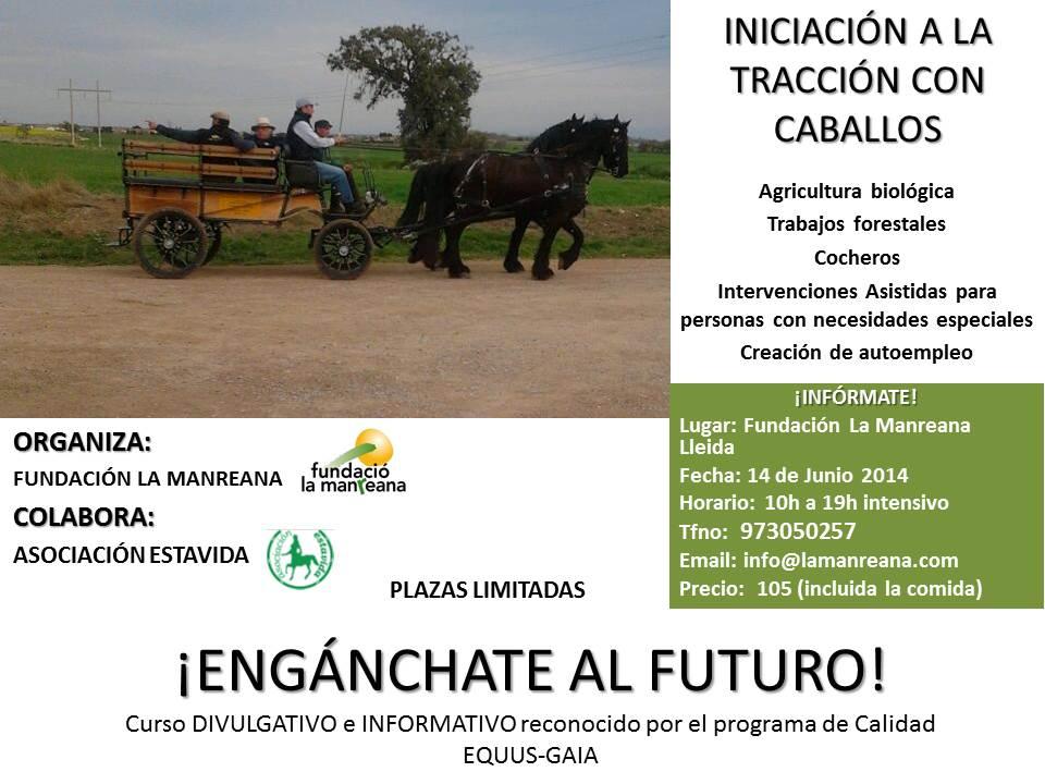 Curso La Manreana. Junio 2014